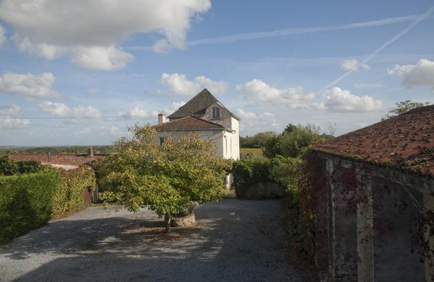 Nouvelles vignes au Château de la Bretonnerie